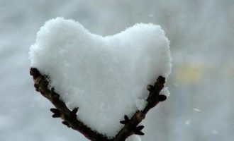 snow_heart_ulyv1